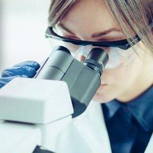 Rossz irányú sejtműködés (daganat)